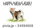 年賀状 犬 戌年のイラスト 34994608