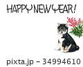 年賀状 犬 戌年のイラスト 34994610