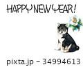 年賀状 犬 戌年のイラスト 34994613