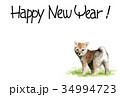 年賀状 戌年 子犬のイラスト 34994723