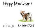 年賀状 戌年 子犬のイラスト 34994724