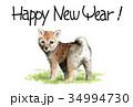 年賀状 犬 戌年のイラスト 34994730