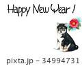 年賀状 犬 戌年のイラスト 34994731