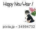 年賀状 犬 戌年のイラスト 34994732