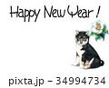 年賀状 犬 戌年のイラスト 34994734