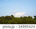 雲 空 青空の写真 34995424