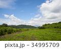 雲 空 青空の写真 34995709