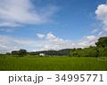 雲 空 青空の写真 34995771