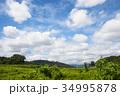 雲 空 青空の写真 34995878