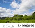 雲 空 青空の写真 34996049