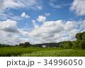 雲 青空 白雲の写真 34996050