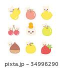 猫ちゃんと果物 かくれんぼ 34996290