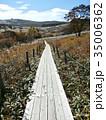 湿原に伸びる木道 35006362