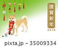 戌年 年賀状 犬のイラスト 35009334