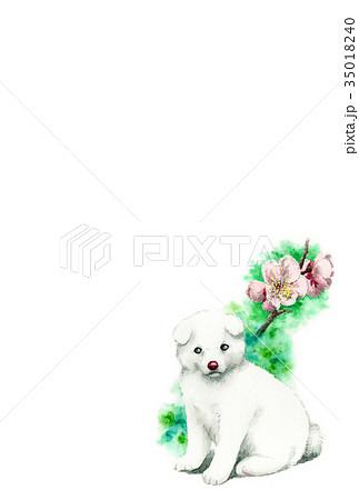 白い子犬の年賀ハガキ素材 35018240