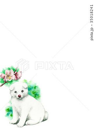 白い子犬の年賀ハガキ素材 35018241
