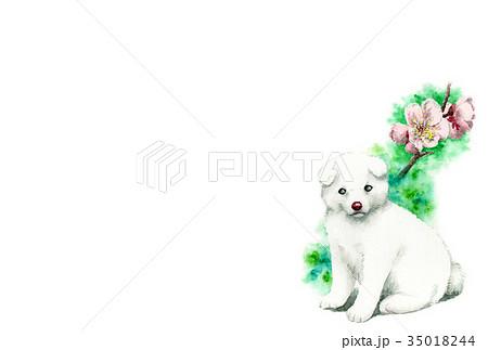 白い子犬の年賀ハガキ素材 35018244