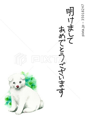 白い子犬の賀詞入り年賀ハガキ素材 35018247