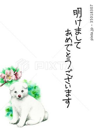 白い子犬の賀詞入り年賀ハガキ素材 35018307