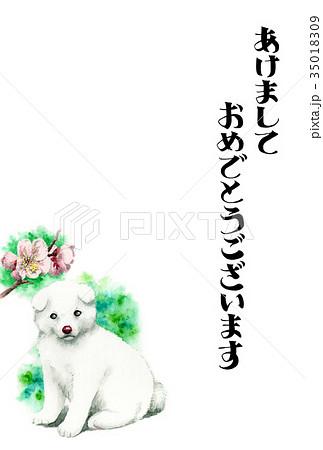 白い子犬の賀詞入り年賀ハガキ素材 35018309
