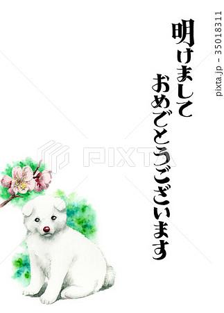 白い子犬の賀詞入り年賀ハガキ素材 35018311