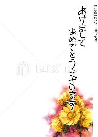 福寿草の賀詞入り年賀ハガキ素材 35018441