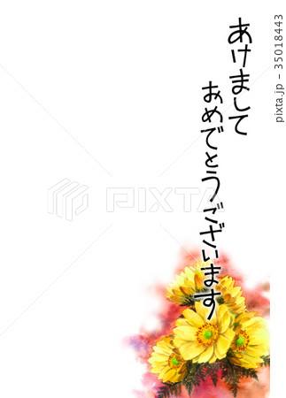 福寿草の賀詞入り年賀ハガキ素材 35018443