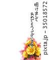 福寿草 花 年賀状のイラスト 35018572