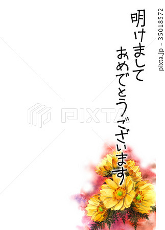 福寿草の賀詞入り年賀ハガキ素材 35018572