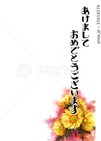 福寿草の賀詞入り年賀ハガキ素材 35018576