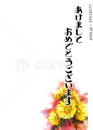 福寿草の賀詞入り年賀ハガキ素材 35018577