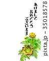 福寿草 花 年賀状のイラスト 35018578