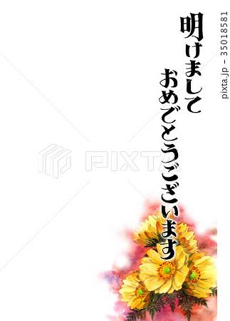 福寿草の賀詞入り年賀ハガキ素材 35018581