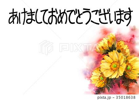 福寿草の賀詞入り年賀ハガキ素材 35018638