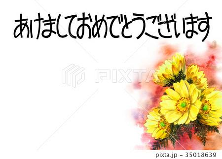 福寿草の賀詞入り年賀ハガキ素材 35018639