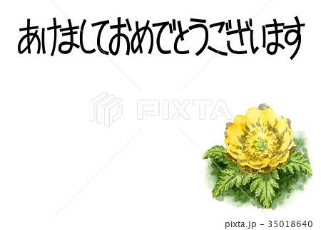 福寿草の賀詞入り年賀ハガキ素材 35018640