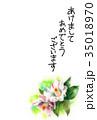 花 年賀状 はがきテンプレートのイラスト 35018970