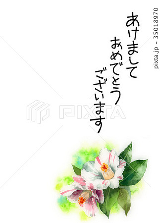 サザンカの賀詞入り年賀ハガキ素材 35018970