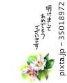 花 年賀状 はがきテンプレートのイラスト 35018972