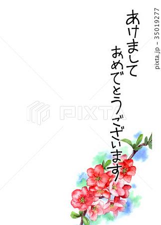 木瓜の花の賀詞入り年賀ハガキ素材 35019277
