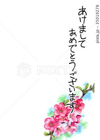 木瓜の花の賀詞入り年賀ハガキ素材 35019278