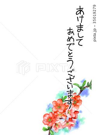 木瓜の花の賀詞入り年賀ハガキ素材 35019279