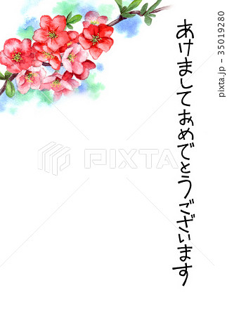 木瓜の花の賀詞入り年賀ハガキ素材 35019280