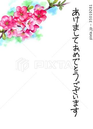 木瓜の花の賀詞入り年賀ハガキ素材 35019281