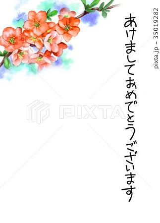木瓜の花の賀詞入り年賀ハガキ素材 35019282