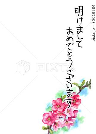 木瓜の花の賀詞入り年賀ハガキ素材 35019284
