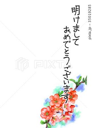 木瓜の花の賀詞入り年賀ハガキ素材 35019285