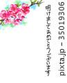 花 年賀状 はがきテンプレートのイラスト 35019306
