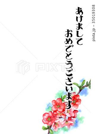 木瓜の花の賀詞入り年賀ハガキ素材 35019308