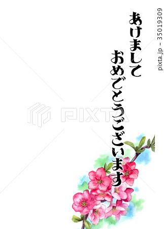 木瓜の花の賀詞入り年賀ハガキ素材 35019309